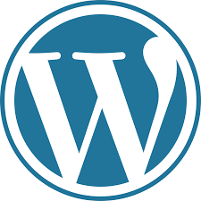 Top 10 Questions about WordPress